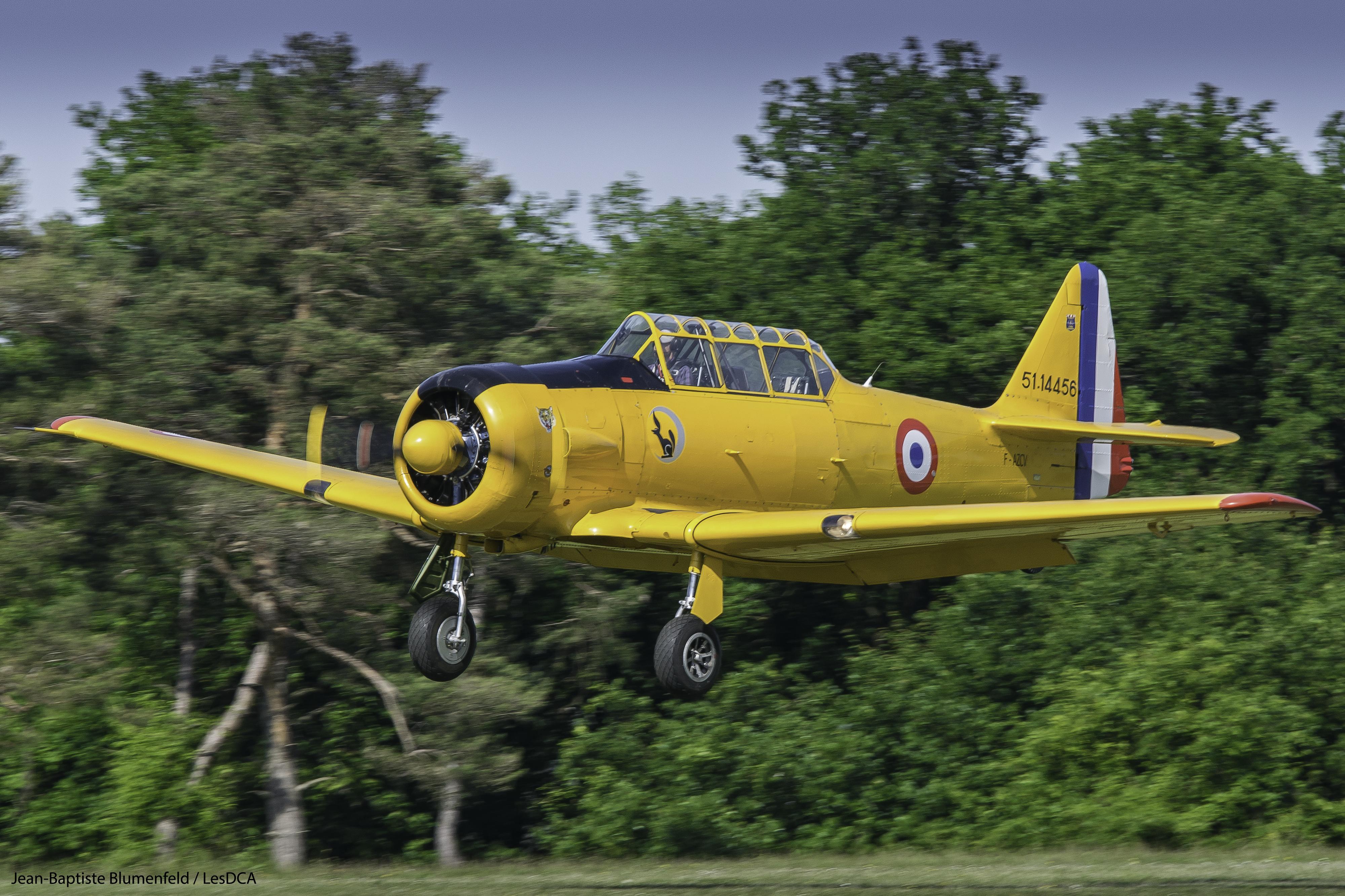 T-6 F-AZCV © Jean-Baptiste BLUMENFELD